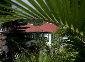 Lily Pond Cottage Saba